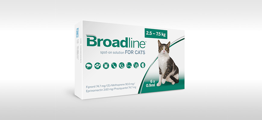 Broadline : Solution Spot-On pour Chats
