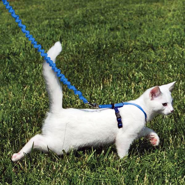 Harnais pour chat Easy Walk