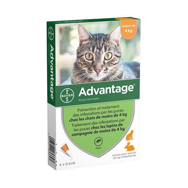Advantage Anti-puces pour Chat (<4 kg) - 6 pipettes