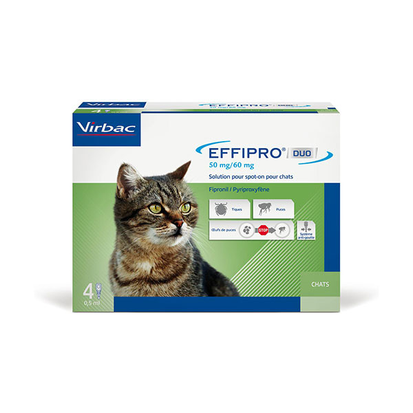 Effipro Duo Spot-On Chat (1-6 kg) - 4 pipettes