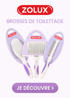 Brosses zolux pour chat