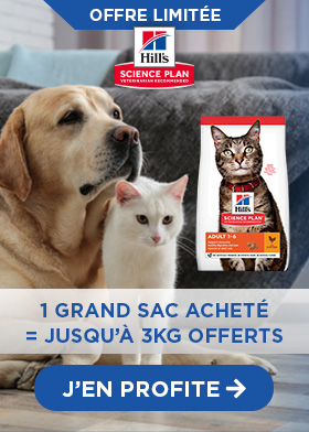 Hill's Science Plan pour chat