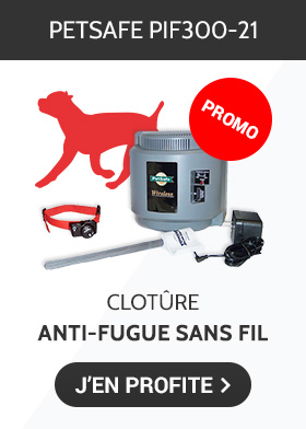 Promotion sur la clotûre anti-fugue PIF300-21